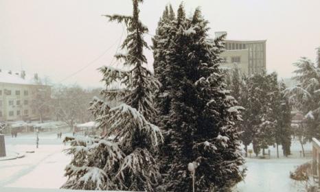 Ваканцията се удължава заради лошите метеорологични условия в Старозагорско. Снимка:topnovini.bg